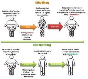 cleansing vs. dieting